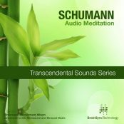 Schumann Resonance Meditation - 35 minute 1